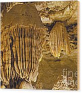 King's Throne Wood Print