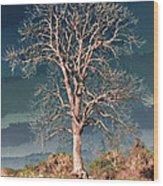 King's Tree Wood Print