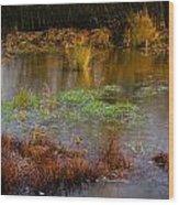 Kintbury Newt Ponds Wood Print