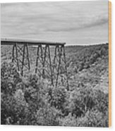 Kinzua Viaduct 6911 Wood Print