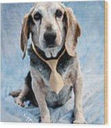 Kippy Beagle Senior And Best Dog Ever Wood Print