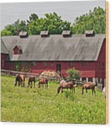 Kirtland Hills Farm 0722 Wood Print