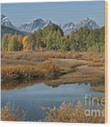 Kiss Of Fall In The Grand Tetons Wood Print by Sandra Bronstein
