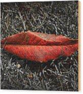 Kiss Of Leaf Wood Print