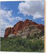 Kissing Camels - Garden Of The Gods Wood Print