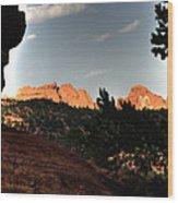Kissing Camels 11344 Wood Print