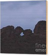 Kissing Camels Wood Print