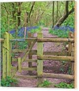 Kissing Gate Painting. Wood Print
