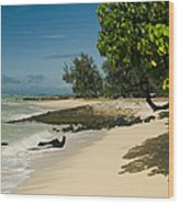 Kite Beach Kanaha Beach Maui Hawaii Wood Print