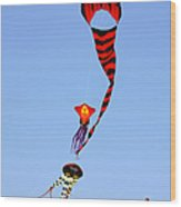 Kites Over Baja California Wood Print