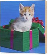 Kitten In Gift Box Wood Print
