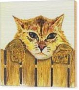 Kitten On Fence Wood Print