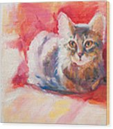 Kitten On Red Chair Wood Print