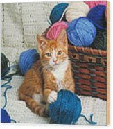 Kitten Playing With Yarn Wood Print