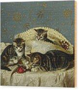 Kittens Up To Mischief Wood Print