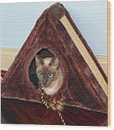 Kitty A-frame Wood Print