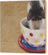 Kitty Cat Time Out Wood Print