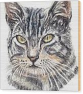 Kitty Kat Iphone Cases Smart Phones Cells And Mobile Cases Carole Spandau Cbs Art 337 Wood Print