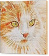 Kitty Kat Iphone Cases Smart Phones Cells And Mobile Cases Carole Spandau Cbs Art 344 Wood Print