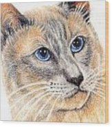 Kitty Kat Iphone Cases Smart Phones Cells And Mobile Cases Carole Spandau Cbs Art 346 Wood Print
