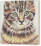 Kitty Kat Iphone Cases Smart Phones Cells And Mobile Cases Carole Spandau Cbs Art 350 Wood Print