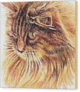 Kitty Kat Iphone Cases Smart Phones Cells And Mobile Cases Carole Spandau Cbs Art 352 Wood Print