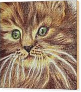 Kitty Kat Iphone Cases Smart Phones Cells And Mobile Phone Cases Carole Spandau 317 Wood Print