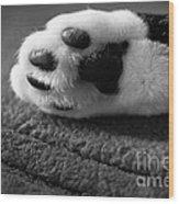 Kitty Paw Close Up Wood Print