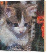 Kitty Photo Art 02 Wood Print