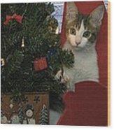 Kitty Says Happy Holidays Wood Print