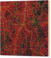 Klimt Surface Wood Print