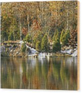 Klondike Park Wood Print