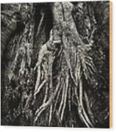 Kneeling At The Feet Of The Green Man Wood Print by Rebecca Sherman