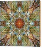Knots Xvi Wood Print