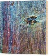 Knotty Plank #1b Wood Print