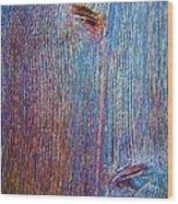 Knotty Plank #2b Wood Print