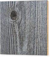 Knotty Plank #3a Wood Print
