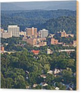 Knoxville Skyline In Summer Wood Print