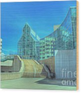 Knoxvillle Tn Convention Center Wood Print
