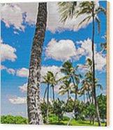 Ko Olina Leaning Palm 3 To 1 Aspect Ratio Wood Print
