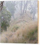 Misty Koa Ridge  Wood Print