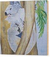 Koala Still Life Wood Print