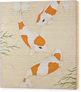Kohaku Wood Print