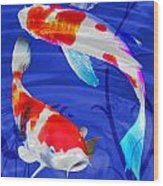 Kohaku Koi In Deep Blue Pool Wood Print