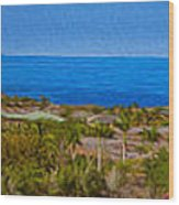 Kohala Coast Panorama Wood Print