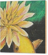 Koi And The Lotus Flower Wood Print