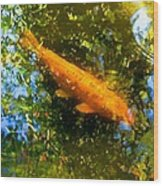 Koi Fish 1 Wood Print