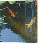 Koi - Oil Painting Effect Wood Print