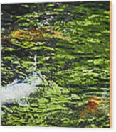 Koi Pond Wood Print by Christi Kraft