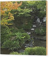 Kokoen Garden Waterfall - Himeji Japan Wood Print by Daniel Hagerman